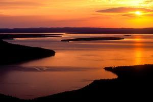 A Golden Sunset Reflected Off the Surface of Yellowstone Lake by Tom Murphy