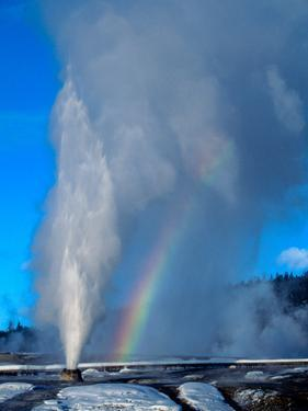 Beehive Geyser Is a Cone-Type Geyser Shooting Water More Than 200 Feet High by Tom Murphy