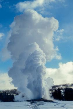 Old Faithful Erupts in Winter by Tom Murphy