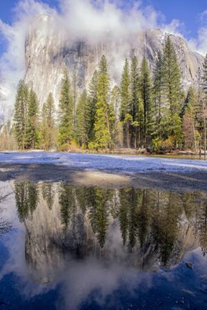 El Capitan seen from Cathedral Beach and Merced River. Yosemite National Park, California. by Tom Norring