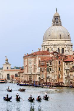 Grand Canal. Basilica Di Santa Maria Della Salute in Background. Venice. Italy by Tom Norring