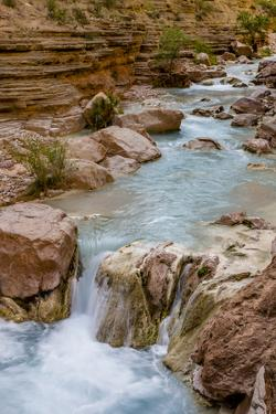 Havasu Creek. Mineral Colored Water. Grand Canyon. Arizona. USA by Tom Norring