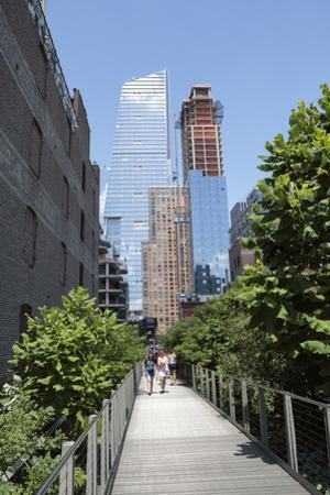 High Line Park on old train tracks above the ground. Manhattan. New York by Tom Norring