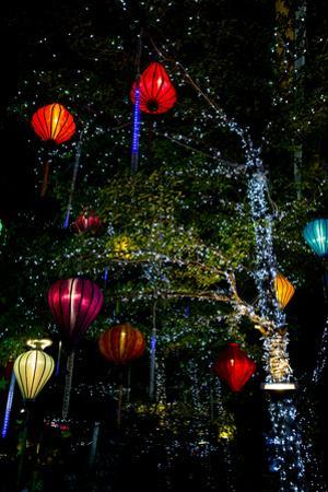 Light decorations. Tet Festival, New Year celebration, Vietnam. by Tom Norring
