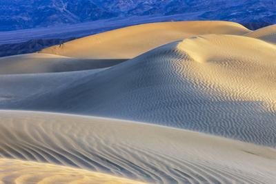 Mesquite Sand Dunes. Death Valley, California. by Tom Norring