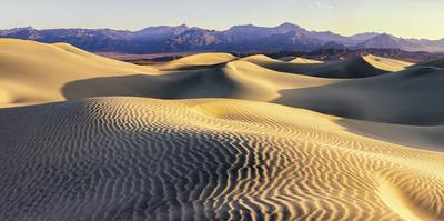 Mesquite Sand Dunes. Death Valley. California. by Tom Norring