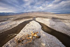 Rainwater creates a creek on Salt Flats. Death Valley, California. by Tom Norring