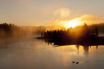 Sunrise at Fishing Bridge. Yellowstone National Park, Wyoming. by Tom Norring