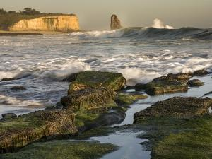 Surf on Four-Mile Beach, Santa Cruz Coast, California, USA by Tom Norring
