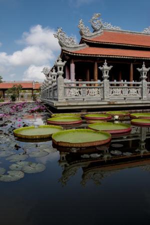 Temple in Sa Dec. Vietnam. by Tom Norring