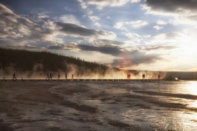 Walkway in mist. Yellowstone National Park, Wyoming. by Tom Norring