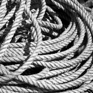 Old Rope BW by Tom Quartermaine