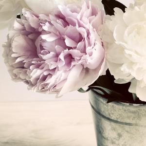 Pink and White Peonies in a Vase by Tom Quartermaine