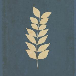 White Leaf on Blue 02 by Tom Quartermaine