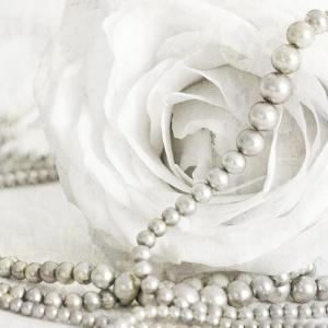 White Rose with Pearls by Tom Quartermaine