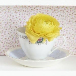 Yellow Flower in Cup and Saucer by Tom Quartermaine
