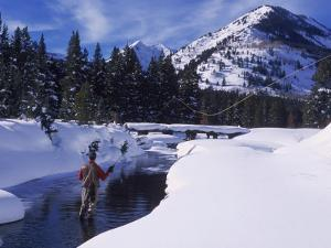 Fly Fishing, Taylor River, CO by Tom Stillo