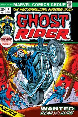 Ghost Rider No.1 Cover: Ghost Rider by Tom Sutton