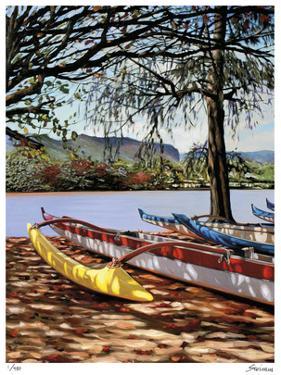 Kauai Shadows by Tom Swimm