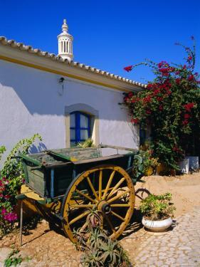 Farmhouse, Silves, Western Algarve, Portugal, Europe by Tom Teegan