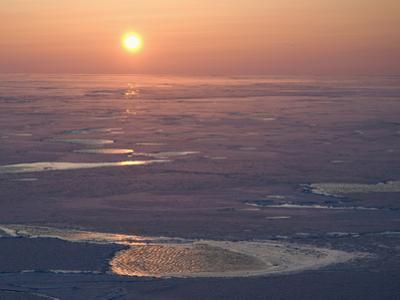 Aerial View of the Bering Sea, Winter 2009, Alaska, USA by Tom Walker