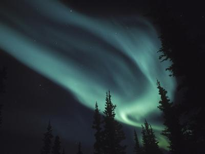 Aurora Borealis, Alaska, USA by Tom Walker