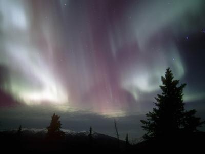Aurora Borealis, Northern Lights, Alaska Range Mountains, Alaska, USA, North America by Tom Walker