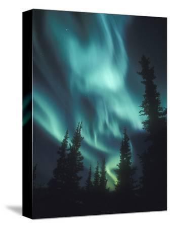 Aurora Borealis, Northern Lights, North America, Alaska, USA by Tom Walker