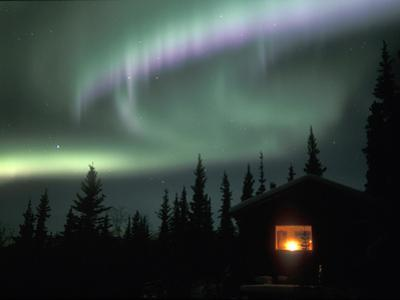 Aurora Borealis on a Cold Winter Night over a Cabin in the Taiga, Alaska, USA by Tom Walker