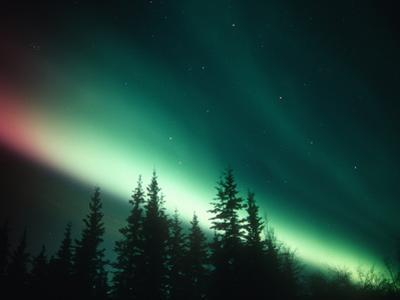 Aurora Borealis or Northern Lights, Alaska Range, Alaska, USA by Tom Walker