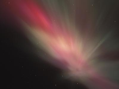 Auroral Crown of Aurora Borealis Viewed Straight Up, Alaska, USA by Tom Walker