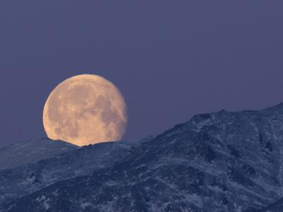Moon over the Winter Alaska Range, Denali National Park, Alaska, USA by Tom Walker