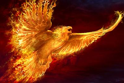 Phoenix Rising by Tom Wood