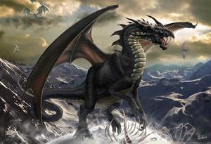Rogue Dragon by Tom Wood