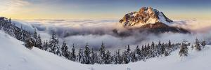 Golden Peak by Tomas Sereda