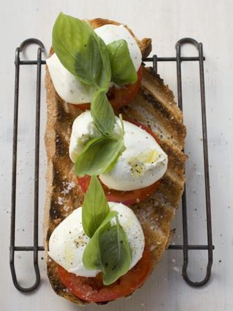 Tomatoes, Mozzarella and Basil on Toasted Bread