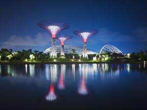Singapore Garden by Bay Super-Trees by Tomatoskin