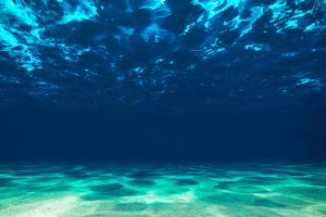 Ocean Bottom, View Beneath Surface by Tomislav Zivkovic