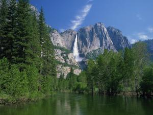 Merced River, Yosemite Falls in the Background, Yosemite National Park, California, USA by Tomlinson Ruth