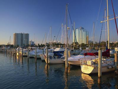 Sarasota Marina in the Evening, Florida, United States of America, North America