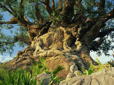 Tree of Life, Animal Kingdom, Disneyworld, Orlando, Florida, USA