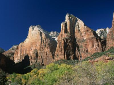 Trees Below Abraham and Isaac Peaks in the Court of the Patriarchs, Zion National Park, Utah, USA