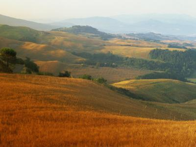 View across Agricultural Landscape at Sunrise, Volterra, Tuscany, Italy, Europe