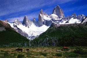 Peaks of the Fitz Roy Mountains by Tommy Heinrich