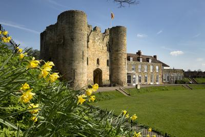 https://imgc.allpostersimages.com/img/posters/tonbridge-castle-with-daffodils-tonbridge-kent-england-united-kingdom-europe_u-L-PWFBD20.jpg?p=0