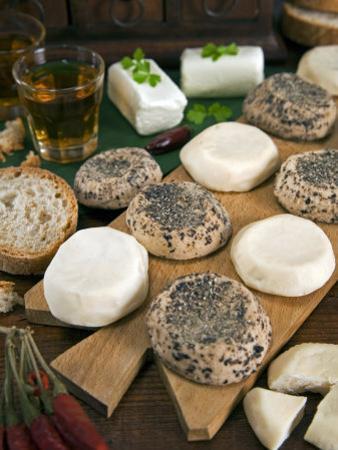 Maltese Goat Cheese, Malta, Europe by Tondini Nico