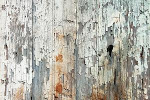 Old Wood Planks Background by Tony Baggett
