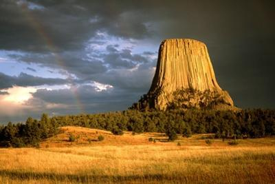 View of Devil's Tower, a Basalt Outcrop