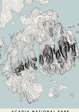 Acadia National Park Topographical Print by Tony Frankenberg