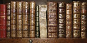 Biblioteca I by Tony Koukos